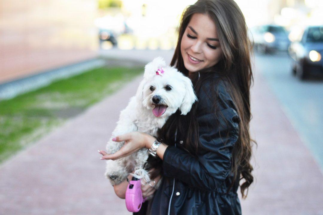 zakupy z psem