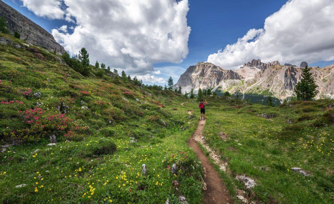 buty trekkingowe w góry