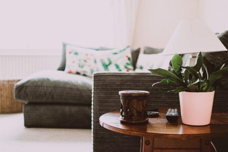 Kwiaty do domu – jakie są popularne i jak o nie dbać?